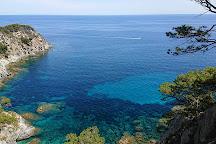 Pointe de l'Oustau de Dieu, Porquerolles Island, France