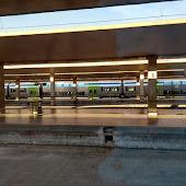 Станция  Firenze S.Maria Novella