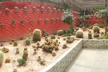 Cactus Valley, Cameron Highlands, Malaysia