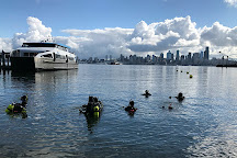 Seattle Dive Tours, Seattle, United States