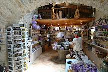 Maison de la Lavande - Domaine Lavandais, Saint-Remeze, France