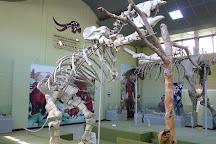 Museo de Paleontologia y Arqueologia de Estanzuela, Estanzuela, Guatemala