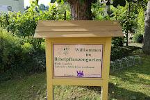 Bibelpflanzengarten, Koenigstein, Germany