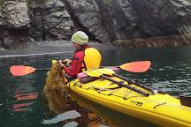 Sunny Cove Sea Kayaking, Seward, United States
