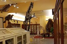 Museo Universitario, Chieti, Italy