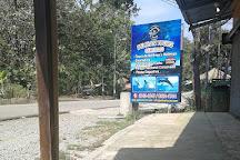 Pelican Tour Day Tours, Uvita, Costa Rica