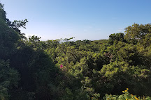 Grenade Hall Forest and Signal Station, Saint Peter Parish, Barbados