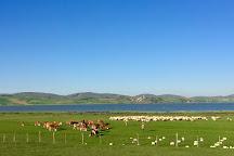 Ladik Golu, Samsun, Turkey