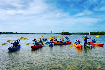 Rising Tide Explorers, Naples, United States