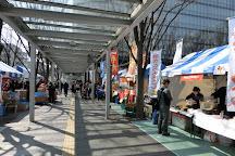 Keyaki Hiroba, Saitama, Japan