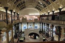 National Museum of Ireland - Natural History Museum, Dublin, Ireland
