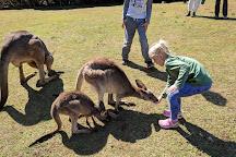 Cooberrie Park Wildlife Sanctuary, Yeppoon, Australia