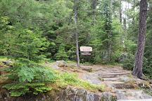 Vermilion Gorge Trail, Crane Lake, United States