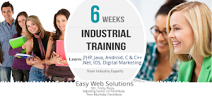 Easy Web Solutions - Computer Training Institute in Panchkula