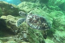 Marine Aquarium and Museum, Kota Kinabalu, Malaysia