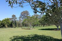 Capalaba Regional Park, Capalaba, Australia