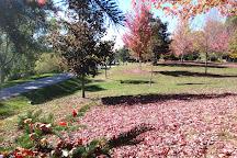 Fairy Lake Park, Newmarket, Canada
