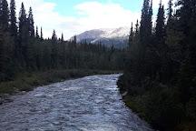 Triple Lakes Trail, Denali National Park and Preserve, United States