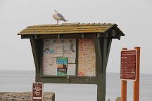 Birch Bay State Park, Birch Bay, United States
