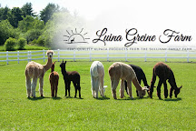 Luina Greine Farm, Groton, United States