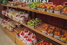 Linton's Farm Market, Oshawa, Canada