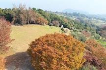 Ushimado Olive Garden, Setouchi, Japan