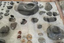 Museo El Fosil, Villa de Leyva, Colombia