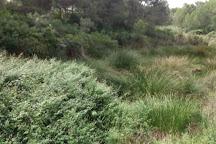 Jungle Parc Mallorca, Santa Ponsa, Spain