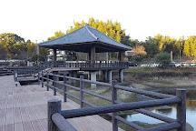 Tempaizan Historical Natural Park, Chikushino, Japan