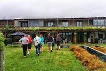 Villa Maria Estate Marlborough Winery, Blenheim, New Zealand