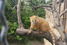 Safari-park Taygan, Bilohirsk, Crimea
