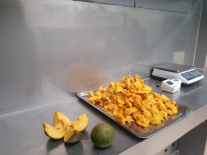 Frozen Fruit Perú 3