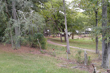 Jarrell Plantation, Juliette, United States