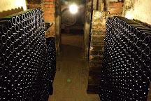 Mas Molla - Traditional Winery, Calonge, Spain