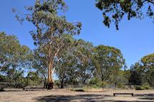 Serendip Sanctuary, Lara, Australia
