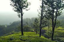 Photo Point, Munnar, India