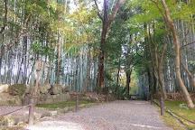Jizoin (Bamboo Temple), Kyoto, Japan