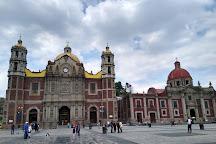 Mexico Tour Freelance, Mexico City, Mexico