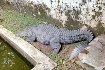 Neyyar Wild Life Sanctuary, Thiruvananthapuram (Trivandrum), India