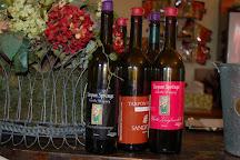 Tarpon Springs Castle Winery, Tarpon Springs, United States