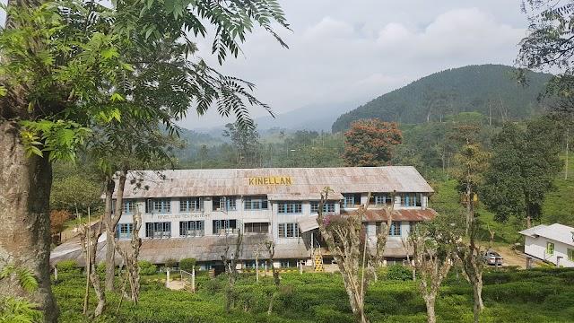 Kinellan Tea Factory & Tea Centre