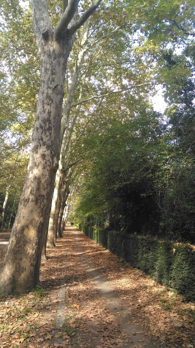 Parc Interdép. de la Grenouillère
