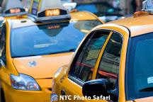 New York City Photo Safari, New York City, United States