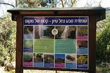 Tel Hazor National Park, Tiberias, Israel
