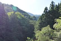 Sazareishi Park, Ibigawa-cho, Japan