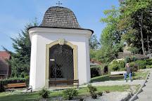 Zamek w Bolkowie, Bolkow, Poland