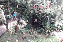 Jardin de los Picaflores, Puerto Iguazu, Argentina