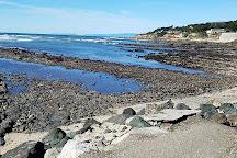Fitzgerald J V Marine Reserve, Moss Beach, United States