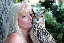 Happisburgh Owl Barn, North Walsham, United Kingdom