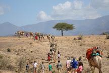 Trek Africa Safaris, Nairobi, Kenya